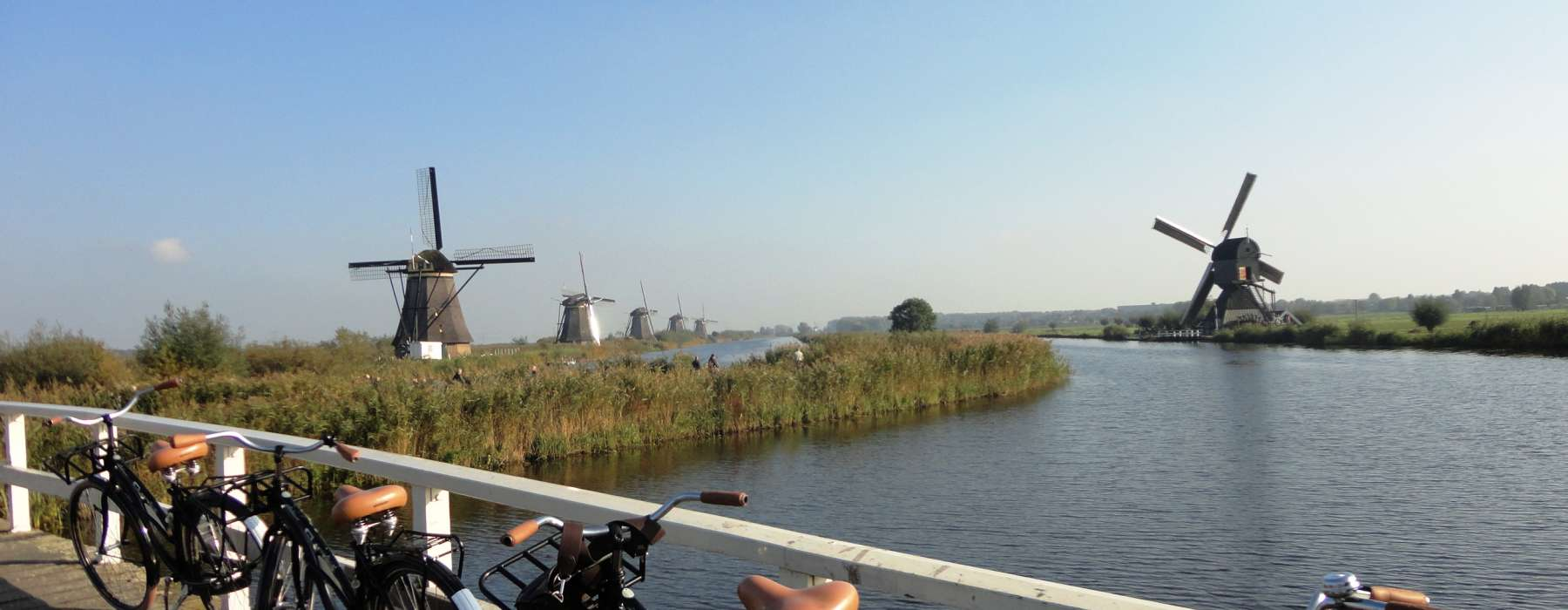 Cycle to Kinderdijk - Green Cow Bike Tours