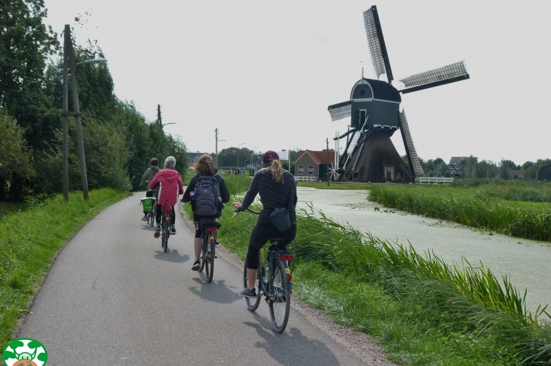 Cycle to E-bike Tour - Green Cow Bike Tours
